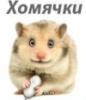 Акция хомячков. - hamsters.jpg